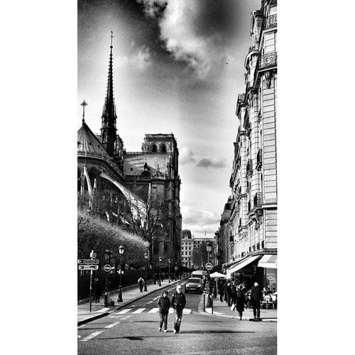 Blackandwhite Notredame Parisjetaime Loves_paris pariscartepostale