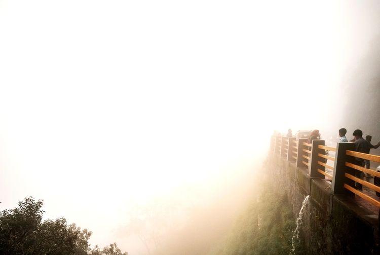 Foggy Wayanad