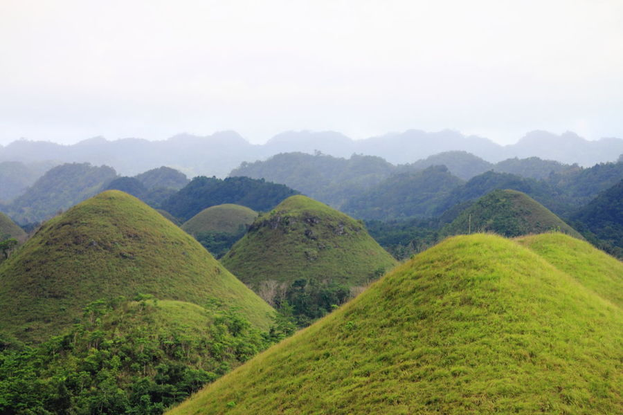 Chocolate Hills Beauty In Nature Day Freshness Green Color Hills Landscape Lush Foliage Mountain Mountain Range Nature No People Outdoors Scenics Tranquil Scene Nature_collection Nature Photography EyeEm Nature Lover The Week On EyeEm The Week On EyeEm Been There. Lost In The Landscape