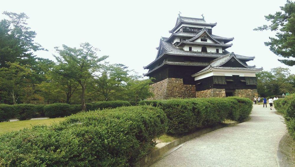 Architecture Built Structure Clear Sky Temple Japan Temple Building
