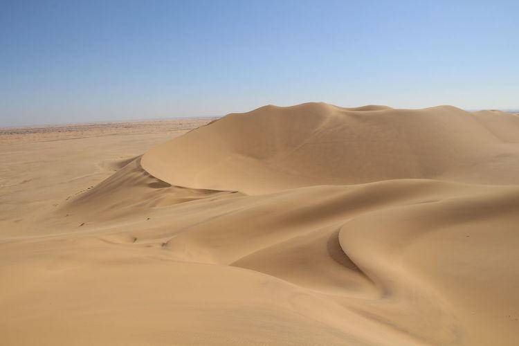Dune Sand Namibia Landscape Nature Sun EyeEm Selects Sand Dune Clear Sky Full Length Desert Arid Climate Adventure Sand Hill Backgrounds Shadow Drought Namib Desert Shining Sunbeam Barren Grazing The Great Outdoors - 2018 EyeEm Awards The Traveler - 2018 EyeEm Awards