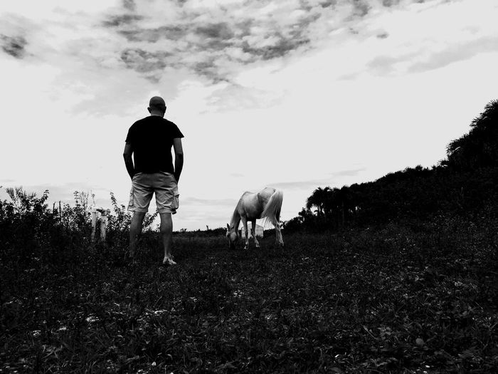 An abandoned horse and myself that I befriended. Somewhere in The Redlands. The Redlands South Florida Mobile Photography Agriculture Self Portrait Brian Soko Landscape