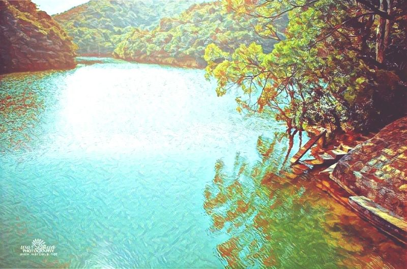 Hongkong Tranquil Scene Nature Tree Sky Outdoors No People Water Day Scenics Tranquility Beauty In Nature First Eyeem Photo Prisma