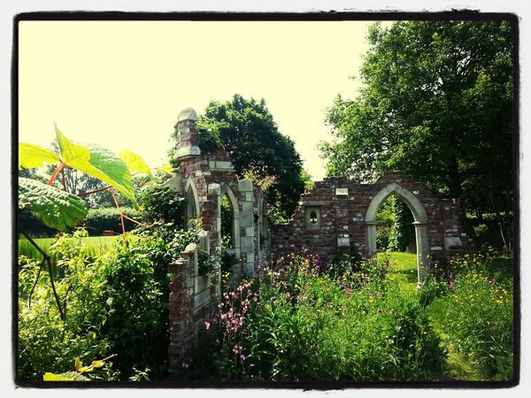 Gorgeous day at Capel Manor
