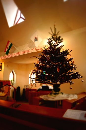 Church Interior Church Holiday Winter Snow ❄ Fun Waiting For Ornaments Cake♥ Party Time Festive Speed Christmas Christmas Tree Celebration Indoors  Christmas Decoration Tradition No People Close-up Night Holiday - Event Christmas Lights Tree