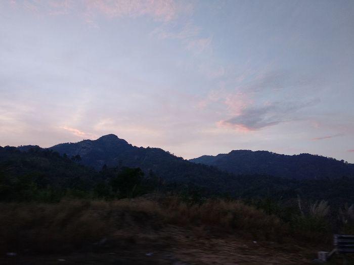 Mountain Landscape Tree Beauty In Nature Mountain Peak Sunset Outdoors