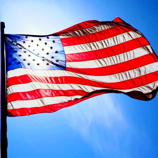USA IPhoneography Flowers Likeforlike EyeEm Nature Lover Nature_collection Nature American Flag Flag Sky
