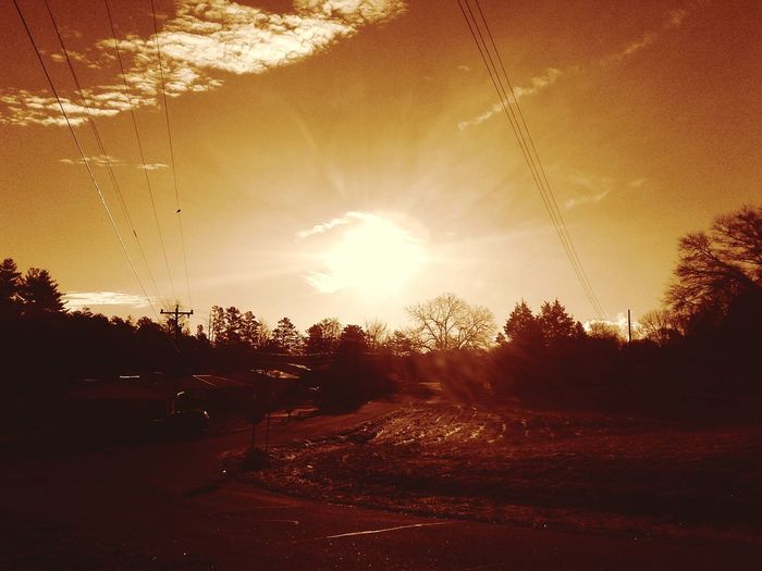 sepia filter sunrising Sunday in the south. Nature Sunset No People Tree Sunlight Outdoors Beauty In Nature Sky Freshness Day