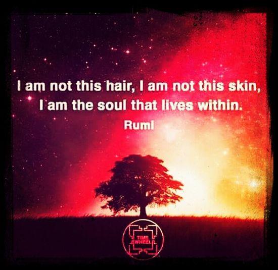 Quotes Soulfuel Wisdom Understanding