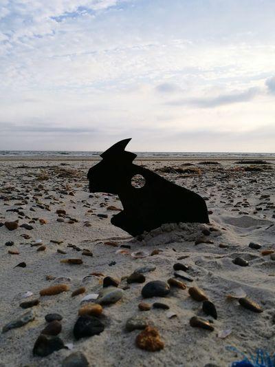 Sand Beach Monster EyeEmNewHere Horizon Over Water Outdoors