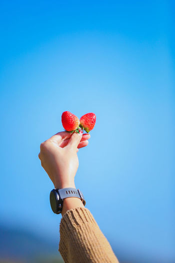 Midsection of man holding strawberry against blue sky