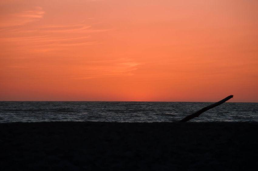 Sunset Sunset_collection California Taking Photos Beachphotography