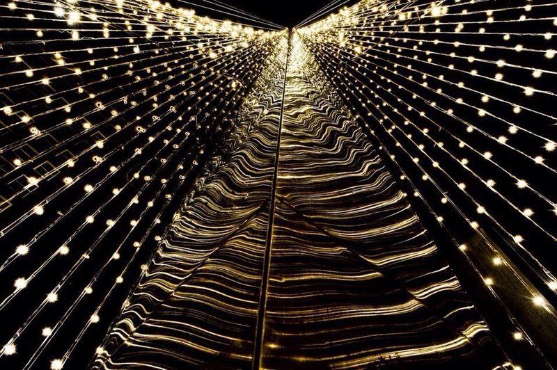 Christmas Lights Cold! Photography