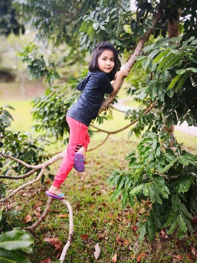 EyeEm Selects Tree Child Full Length Childhood Climbing Smiling Portrait Happiness Cheerful Girls