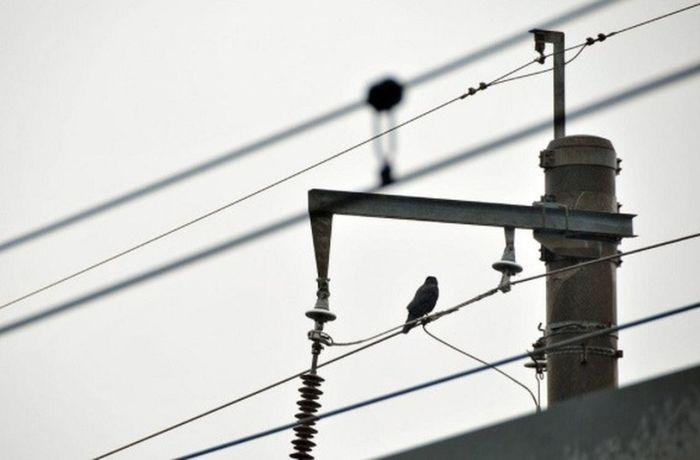 Power Lines Get Close