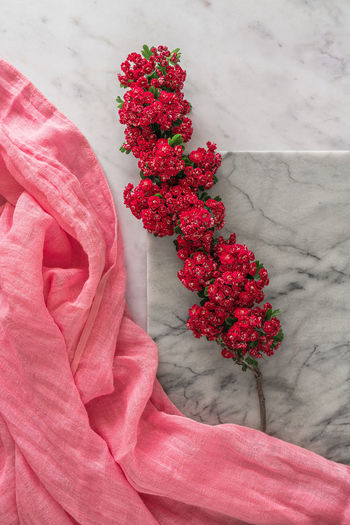 Close-up of pink flower bouquet against red wall