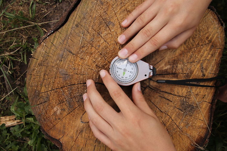 Just find your own way, and move on... Hands Work Direction Compass Tree Stump Outdoor Nature Wood Hands At Work North South East West Grass Outdoors