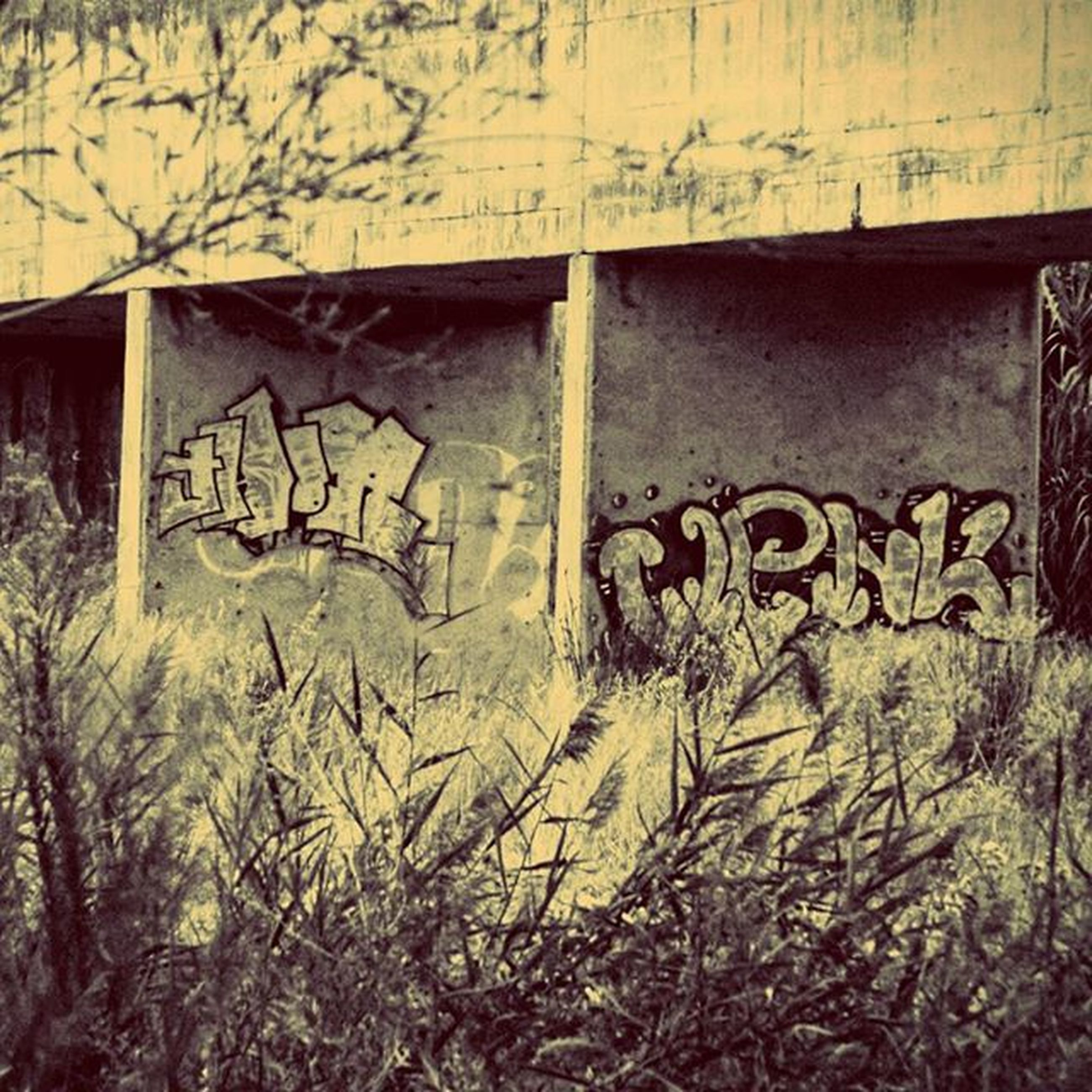 graffiti, architecture, built structure, abandoned, damaged, wall - building feature, building exterior, obsolete, run-down, deterioration, weathered, old, wall, text, bad condition, house, day, no people, western script, outdoors