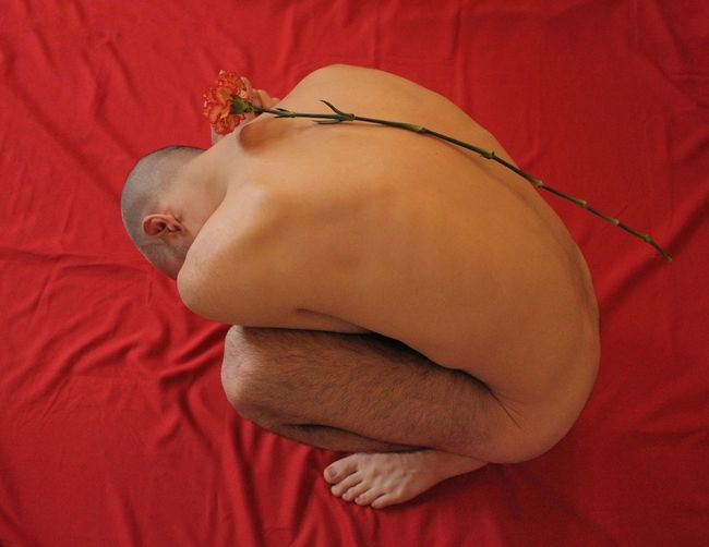 Contemporary Art Emotions Flowering Plant Nudity, Plant Art Bed Beuty Body Part Flower Human Body Part Male Malebody One Person Red Skin
