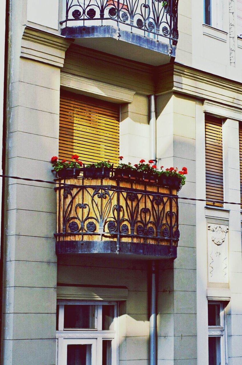 architecture, building exterior, built structure, balcony, low angle view, outdoors, house, day, no people, flower, window box, city