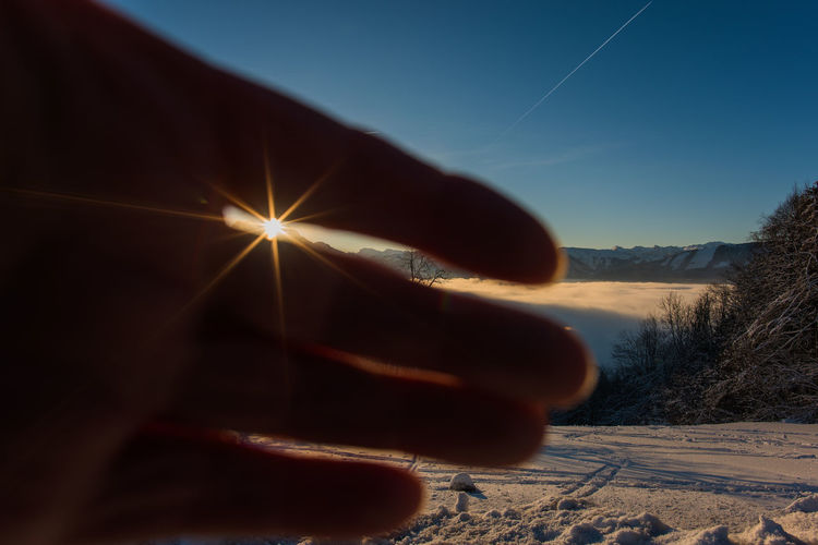 Person hand by tree against sky during winter