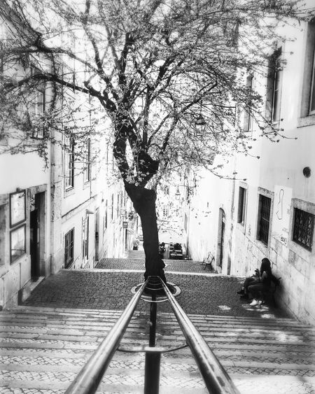 Tree Outdoors Day Architecture City Lisboa🇵🇹 Lisbon - Portugal Outdoorphotography Real People Blackandwhite P&B B&w Street Photography