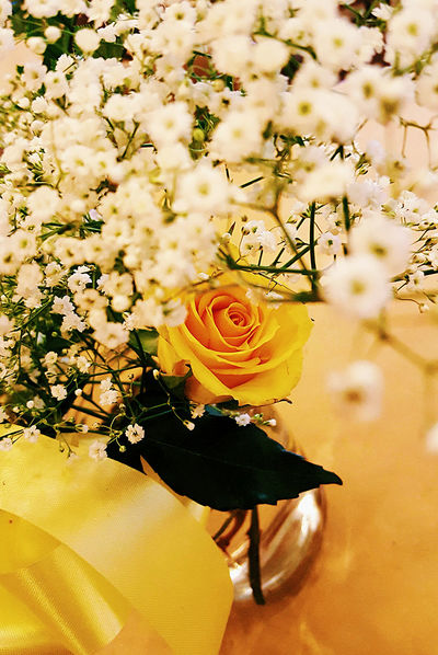 Yellow Yellow Flower Babys Breath Funeral Sister Love Roses Yellow Rose Color Palette