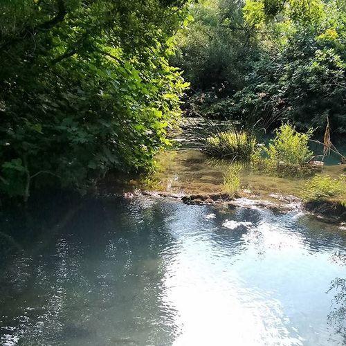 Keinfilter Ohnefilter Kroatien Kroatien2015 Natur Wasser Fluss BACH Baum Bäume Wald Ufer