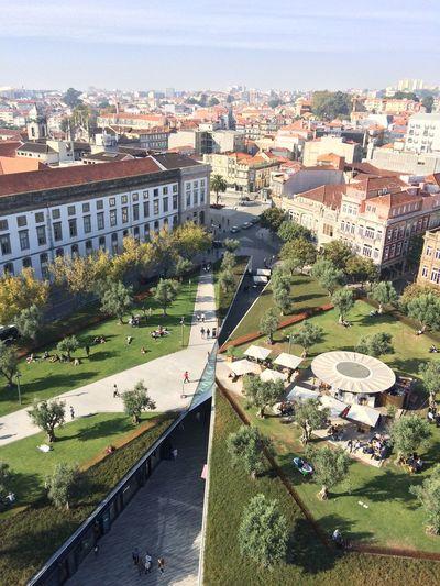 Porto Baixaporto Base Bar Torre Dos Clérigos On Top Of The World City View