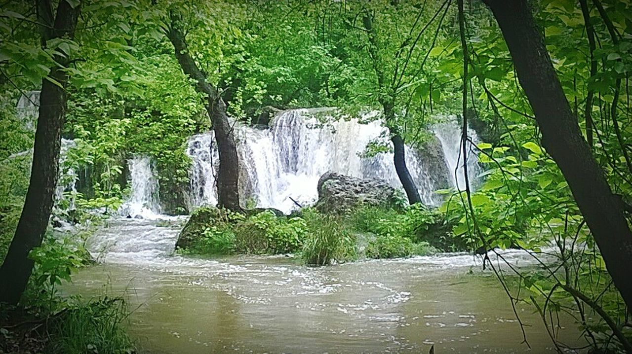 waterfall, water, nature, social issues, beauty in nature, vacations, tree, scenics, landscape, forest, green color, lush foliage, travel destinations, outdoor pursuit, river, tranquility, beauty, tranquil scene, plant, no people, outdoors, day, freshness, charming, rural scene, grass