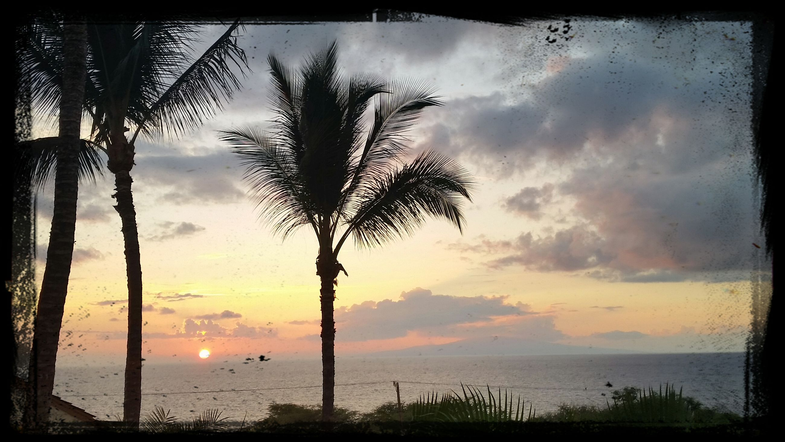 sky, sunset, tranquility, tranquil scene, scenics, tree, silhouette, beauty in nature, cloud - sky, water, nature, tree trunk, sea, transfer print, horizon over water, idyllic, palm tree, cloudy, cloud, auto post production filter