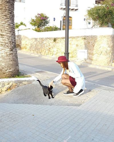 Goodmorning Lovecats Photooftheday Smile Instamoment Realgirls Love Animal Bloggerwoman Catssweet Catcuriosity Ibiza Fashionblog Like4like Outfitoftheday Sundaymorning Nofilter 😚