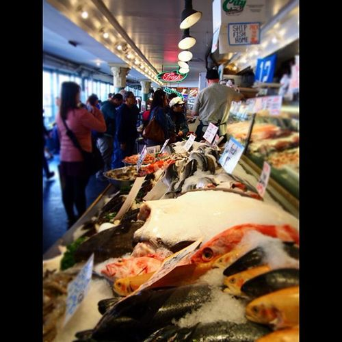 Fresh fish at Pikes Place Market in Seattle Seattle Seattleseafood Exploreseattle Washington Fish Market Pikesplacemarket Freshfish Travel Travelgram Wanderlust Daytrip Lookingatme Neonlights Food