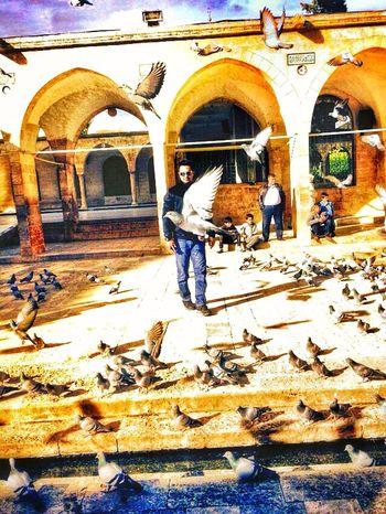 Emt 112 Antalya Turkey Quality Time