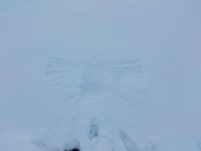 It's Cold Outside Snowangel Hintergrundgestaltung Mountain Freedom Nice Feeling Good Happy