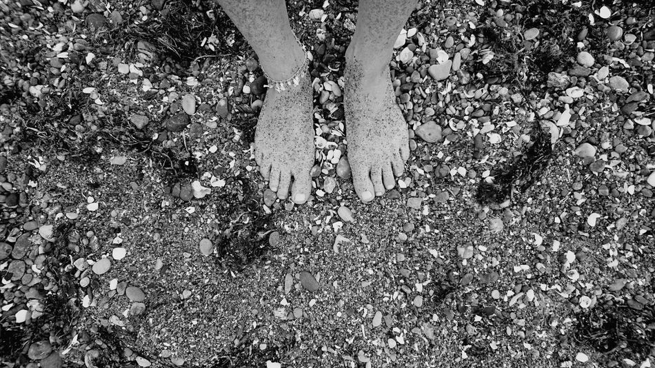 Human Foot Beach Sand Sun Holiday Muschelschalen Black And White Photography Black And White