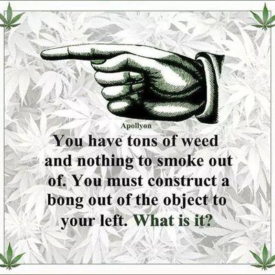 What is it? Potheadproblems Potheadstuff Pothead Stoner bong weed marijuana maryjane herb