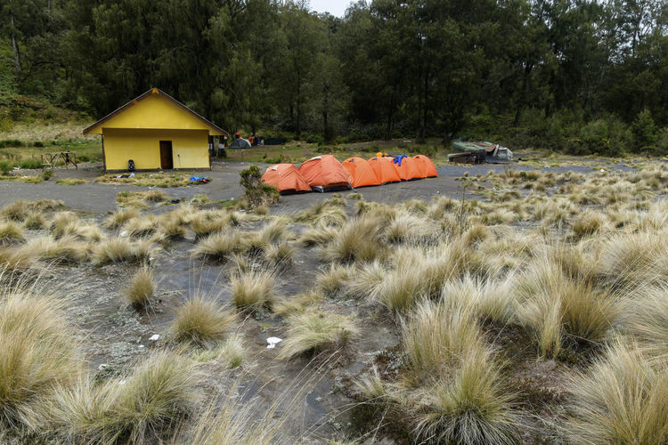 Camping tent in mountain Camping Hiking INDONESIA Iglu Backpacker Camp Hiker Kali Mati Landscape Mountain Savana Semeru Semeru Mountain Site Tent Traking