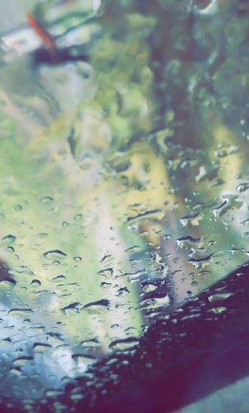 Rain Sadday Hope Water Watching You Water Nature No People Close-up Leaf Day Concentric Outdoors Floating On Water Beauty In Nature First Eyeem Photo