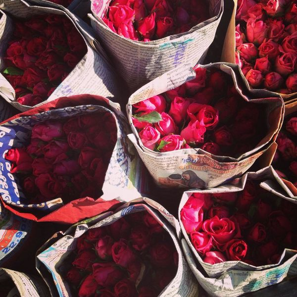 Carnations Roses Are Red Peonies Flowers Enjoying Life Photography Women Of EyeEm Love ♥ Flower Valentine Day
