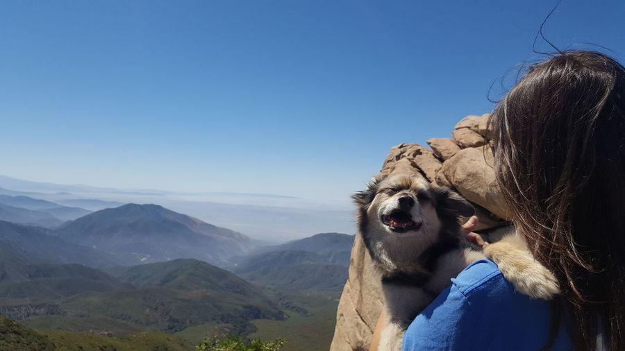 Beauty In Nature Blue Doggie Mountain Pet Ringo Scenics Sky