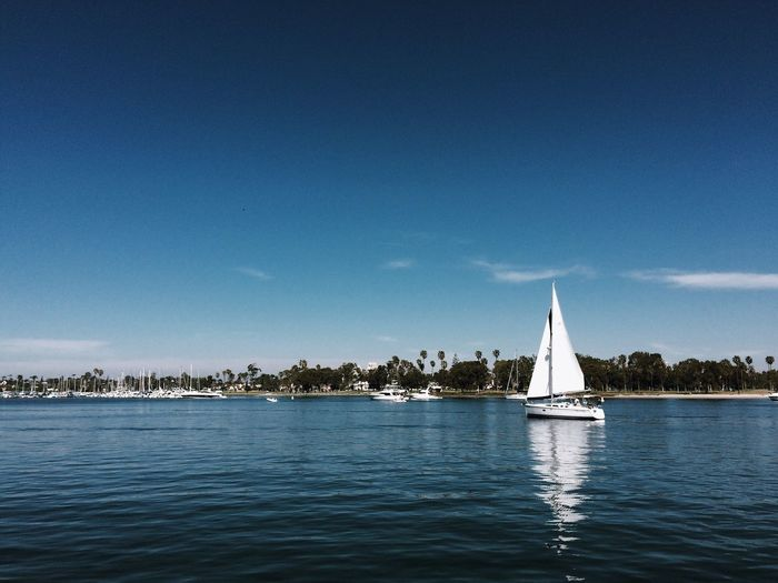 Sailing Activity Sailing Sailboat San Diego Coronado Island Showcase: March Showcase March Landscape With Whitewall Here Belongs To Me The Great Outdoors - 2016 EyeEm Awards Fine Art Photography Tourism Tourist Tourists Tourism Destination Tourismus Home Is Where The Art Is