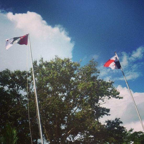 Banderas Panamá Cocle Parque15DeEnero Anton Nov5 AntonEsTradicion VivaPanama Vienen bajando las fotos del 5 de noviembre en Anton XD