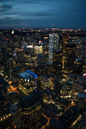 Toronto nights