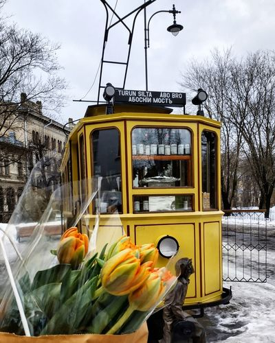 Yellow Train - Vehicle Coffee Shop Vegetable Winter Sky Food And Drink Vegan Farmer's Market Bus Squash - Vegetable Land Vehicle Vegetarian Food Parking Side-view Mirror Cauliflower Gluten Free School Bus Low Carb Diet Gourd Beet Pumpkin Double-decker Bus Vehicle Snow Covered Rosario Santa Fe Province
