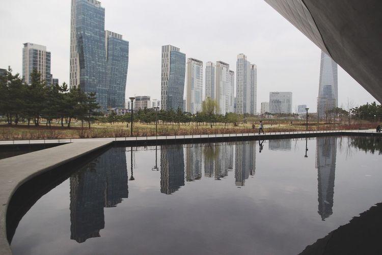 Buildings Reflecting In Pool