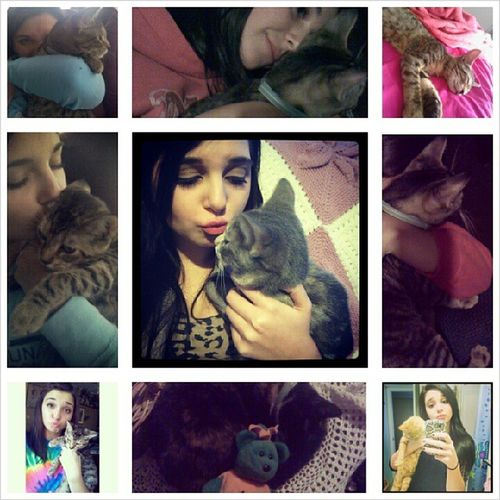 National cat day everyday in my life' Catladyprobz