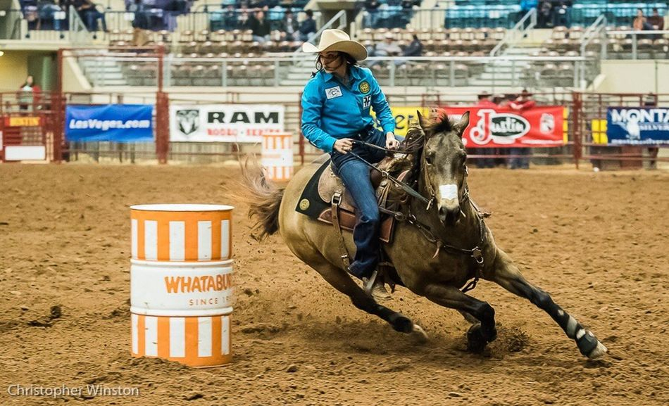 One Animal Horse One Person People Event Leisure Activity Eye For Photography Eyemphotography Canonphotography Rodeo Barrel Racing Cowgirl Stadium Animal Skill