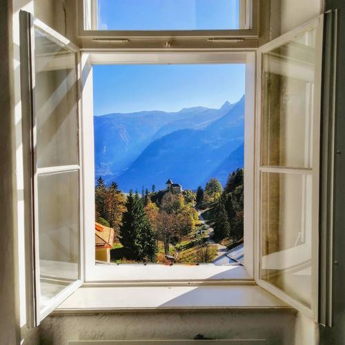 Trees And Mountains Seen Through Window