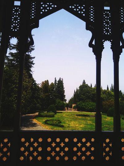 Georgia Tsinandali Tsinandali Garden Nature